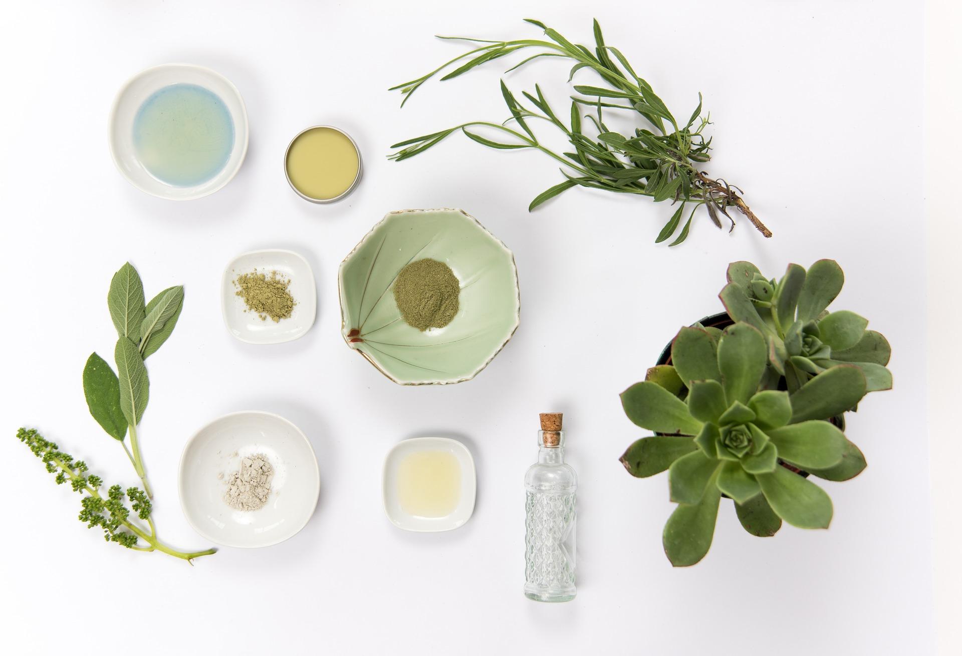 Warsztaty tworzenia naturalnych kosmetyków – 28 września, Gdynia